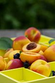 Fresh peaches with berries
