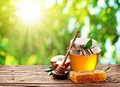 Glass can full of honey, apple and combs on wooden table at the nature background.