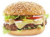 pic of hamburger-steak  - Hamburger isolated on a white background - JPG