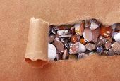 Sea stones through torn brown paper