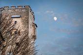 Castle under moon at twilight
