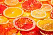 Colorful citrus fruit - lemon, orange, grapefruit - slices background. Backlit