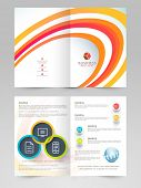 Professional business 2 page flyer, template or brochure design for your presentation.