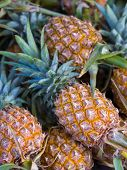 A stack of fresh pineapples for sale at a market