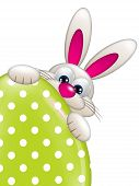 Easter Bunny Holding Spring Egg With Place For Text