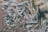 Frost Pattern Formation On House Window Macro
