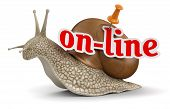 On-line Snail (clipping path included)