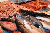pic of saltwater fish  - many fresh saltwater fish for sale in fish market in southern Italy - JPG