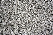 image of terrazzo  - terrazzo material of wall of the house - JPG