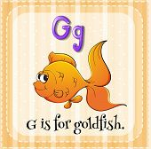 stock photo of goldfish  - Flashcard alphabet G is for goldfish - JPG