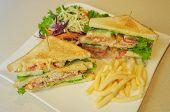 foto of sandwich  - club sandwich - JPG
