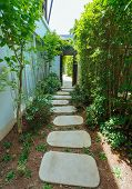 picture of house woods  - Rocks Pathway Through A Tropical Country House - JPG