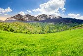 image of mountain-high  - composite summer landscape with 3D mountains - JPG