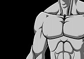 picture of grayscale  - Illustration of muscular male chest on black background - JPG