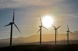picture of windmills  - Renewable Energy Concept Windmil Farm at Sunset - JPG