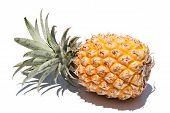 Pineapple On Side