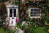 foto of english cottage garden  - A postcard view of English cottage garden - JPG