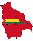 stock photo of armadillo  - Detailed and colorful illustration of armadillo Bolivia - JPG