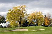 Autumn Golf Hazard