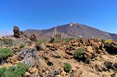 Mount Teide at Tenerife in the Canary Islands