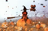 Witch Sitting On Pumpkin,3d Illustration Conceptual Background And Ideas poster