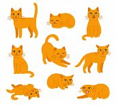Cartoon Cat Set With Different Poses And Emotions. Cat Behavior, Body Language And Face Expressions. poster