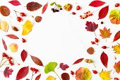 Abstract, Autumn, Autumn Composition, Autumn Layout, Autumnal, Background, Berry, Card, Colorful, Co poster