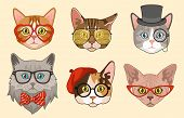 Cat Heads. Cute Funny Cats Avatar Muzzles With Accessories, Glasses And Hats, Bow Tie. Happy Hipster poster