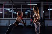 Women Doing Push Ups Training Arms With Trx Straps. Personal Training. A Female Trainer In The Gym F poster