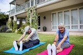 Senior couple performing stretching exercise on exercise mat in lawn poster