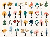 Set Of Trees In A Flat Style. Tree Icons Set In A Modern Flat Style. Pine, Spruce, Oak, Birch, Trunk poster