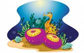 illustration of a colorful reef element - EPS VECTOR format also available in my portfolio.