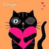 love black cat