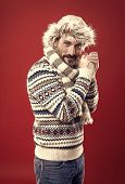 Enduring Cold. A Winter Ensemble Protects Him From Cold. Bearded Man Accessorizing Sweater With Hat  poster