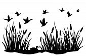 A Flock Of Wild Ducks Flying Over A Pond With Reeds. Black And White Illustration Of Ducks Flying Ov poster