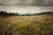 Rain fallin on a mountain meadow with heavy skies