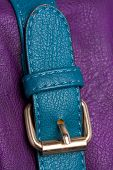 Golden Buckle On Blue Strap
