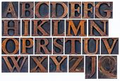 complete English alphabet  in vintage  wood type - a  collage of 26 isolated letterpress printing bl