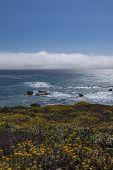 Cloud bank on California Coast