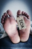 stock photo of autopsy  - Dead on arrival - JPG