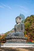 stock photo of seoraksan  - Buddha statue at Shinheungsa Temple in Seoraksan national park South Korea - JPG
