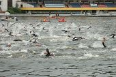 Poznan Triathlon Swimming