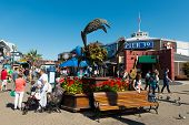 foto of tourist-spot  - SAN FRANCISCO CALIFORNIA - OCT 5: Pier 39 fisherman