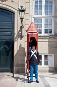 Guardsman On A Post