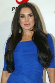 HOLLYWOOD - Saye Yabandeh arrives at the 2013 Philhellenes Gala benefiting Praksis at the SkyBar on