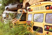 Scrapped School Buses Sit In Auto Junkyard