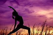Silhouette of young woman doing yoga at outdoor park.