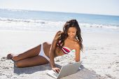 Sexy young woman in bikini using her laptop on the beach