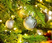 Bauble In A Christmas Tree