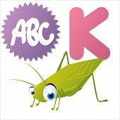 K is for Katydid